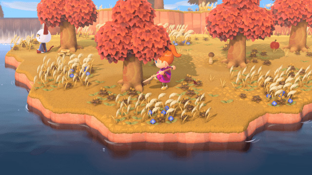 Animal Crossing New Horizons For The Nintendo Switch